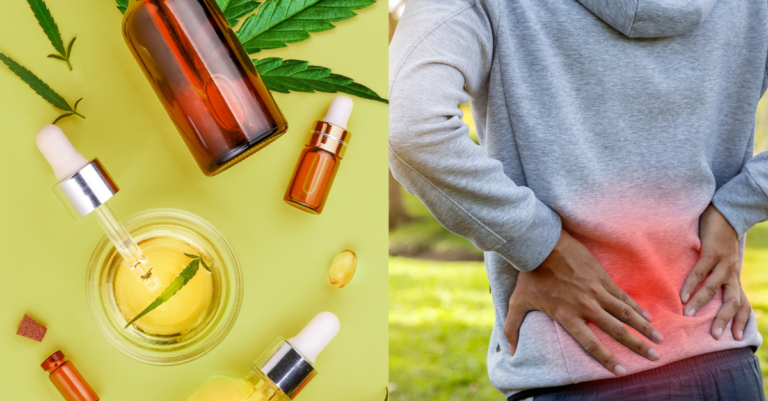Does CBD help with back pain?