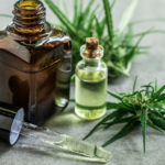 The use of CBD in neurological diseases