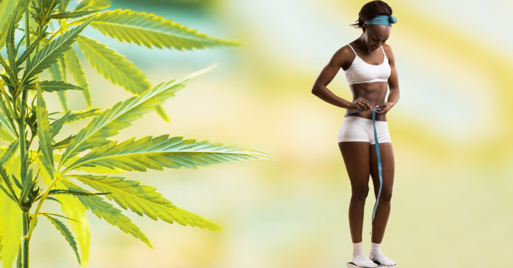Can CBD Help You with Weight Loss?, #1 USA Cannabidiol Blog