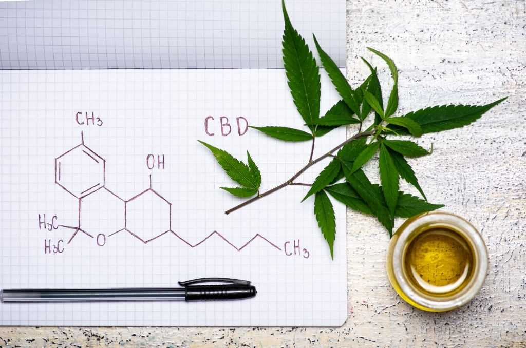 Benefits of Broad-Spectrum CBD Oil, What Are The Benefits of Broad-Spectrum CBD Oil?, #1 USA Cannabidiol Blog