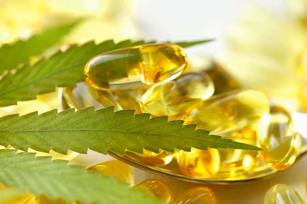 Facts About CBD, 9 Not-So-Obvious Facts About CBD: What Did Not Know, #1 USA Cannabidiol Blog